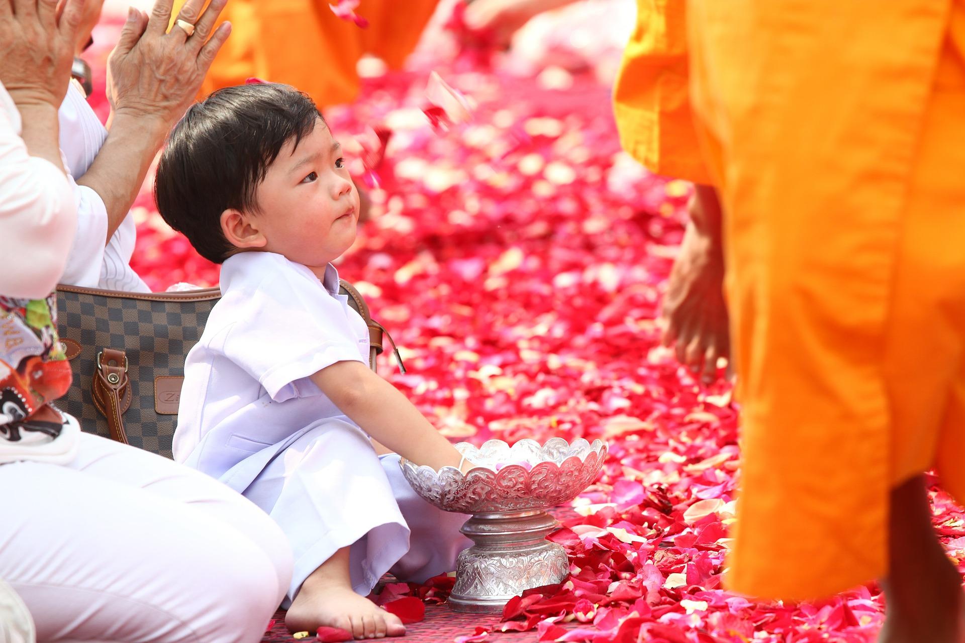 Mash&Co buddhists